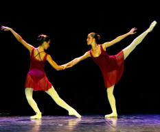 Homenaje-Bailarin'14(1)